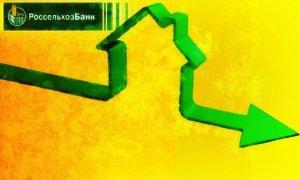 Способы, как снизить процентную ставку по ипотеке в Россельхозбанке